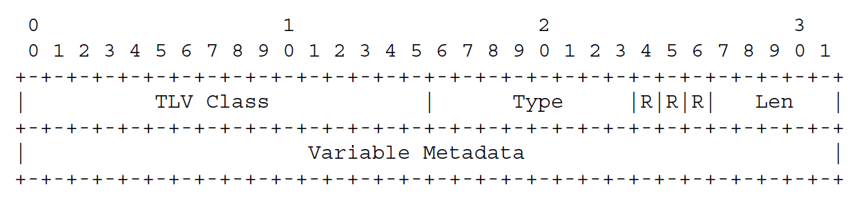 图7  TLV格式