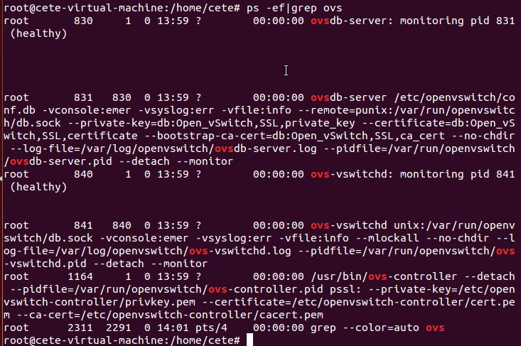 基于Open vSwitch的VxLAN隧道实验网络 预先配置 图3