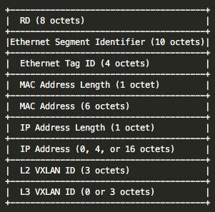 VXLAN L3应用EVPN,呈现完整overlay网络  SDNLAB   专注网络创新技术